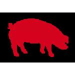 Porc (17)