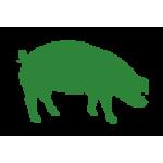 Porc (0)